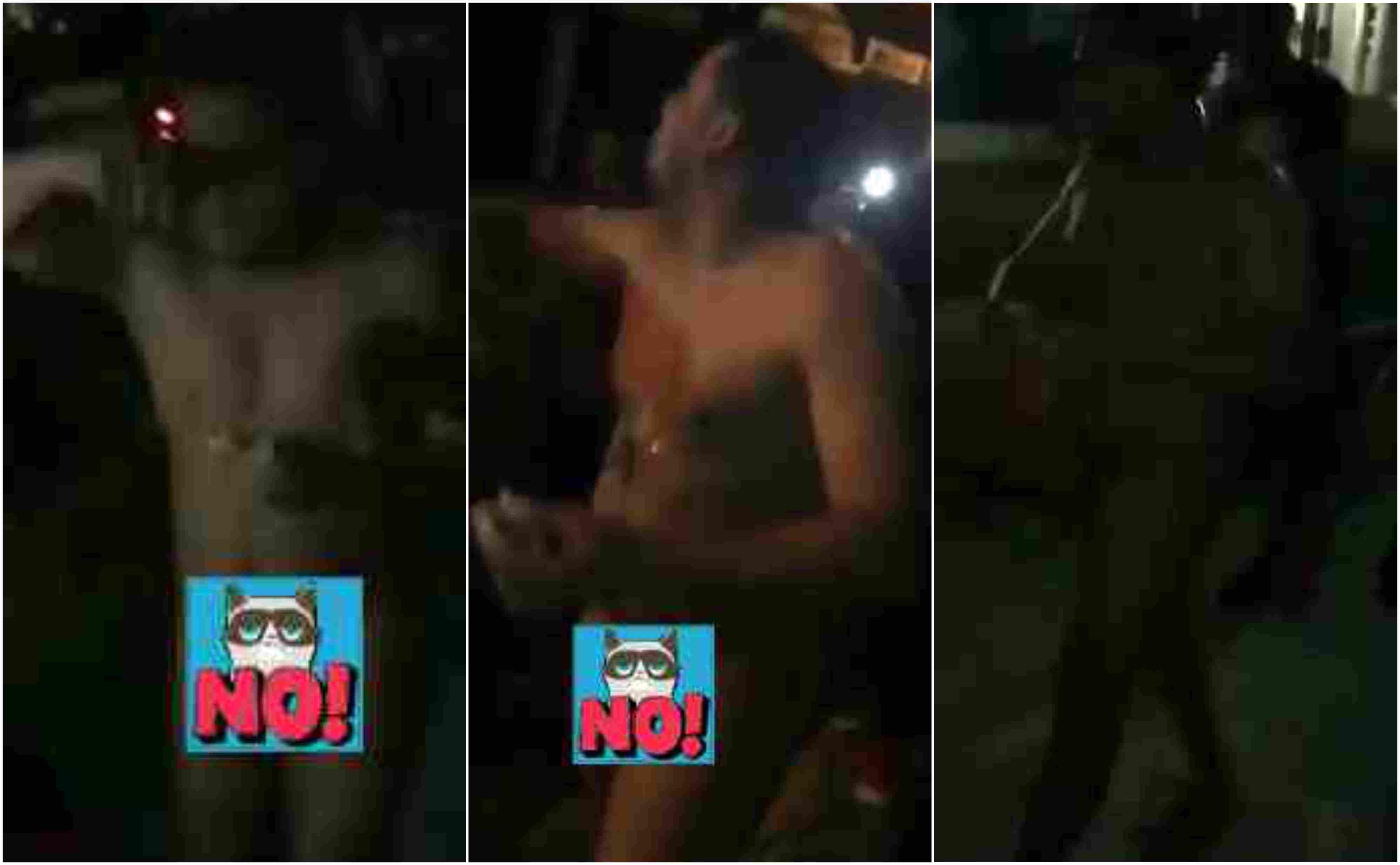 Hombre Pasea Desnudo En Parque De Ocoa Imágenes Dominicanas